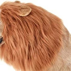 Other - L/XL lion mane dog costume with ears.